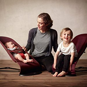 baby bjorn bouncer toddler chair